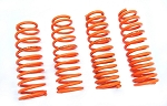 Megan Racing - Lowering Springs - Dodge Charger 2006-2010