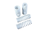 Truhart - Lowering Springs - Honda Civic 1992-2000 / Acura Integra 1994-2001